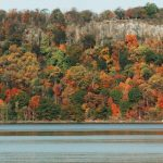 Trees in fall on the Hudson River